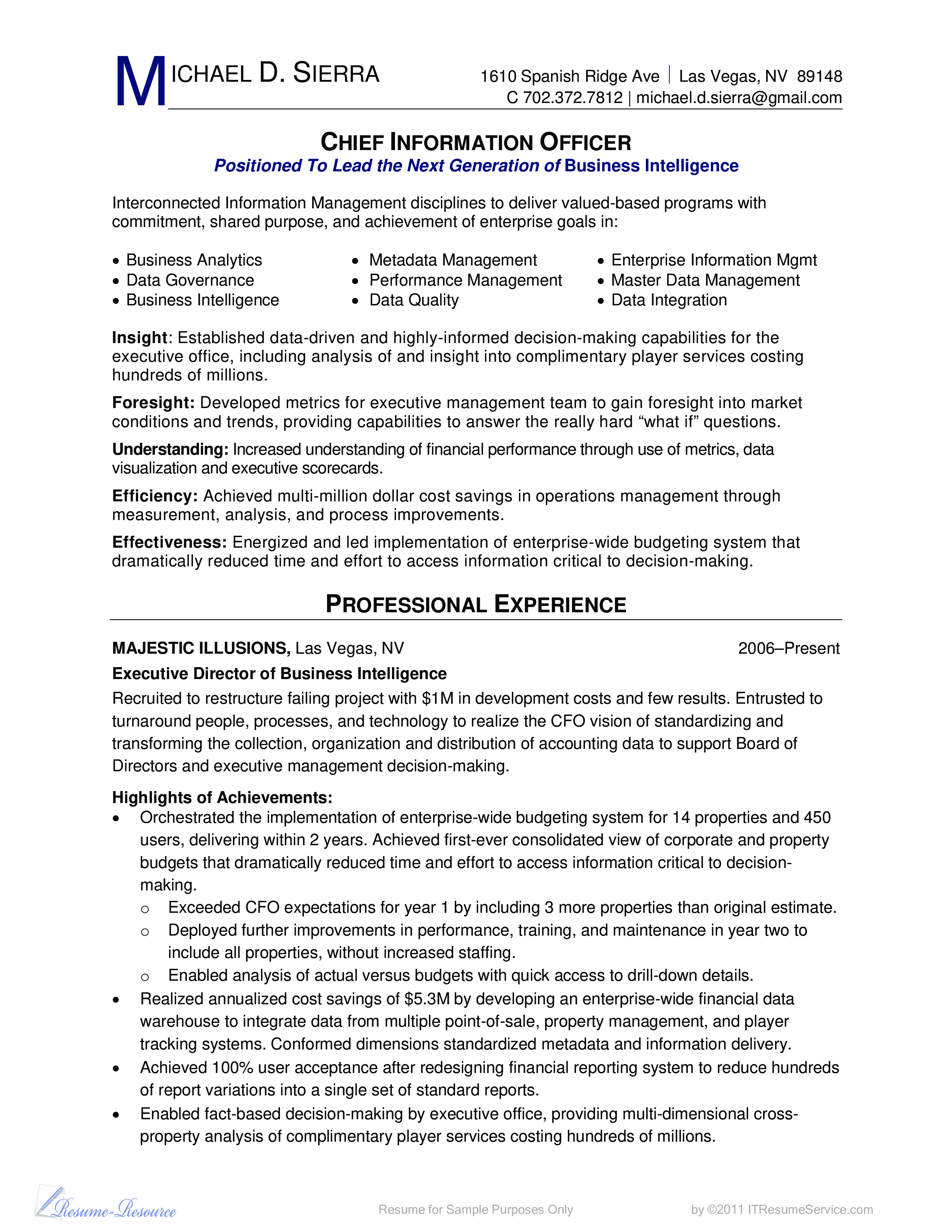 Free professional cio cv for bi business templates at professional cio cv for bi business main image download template accmission Image collections