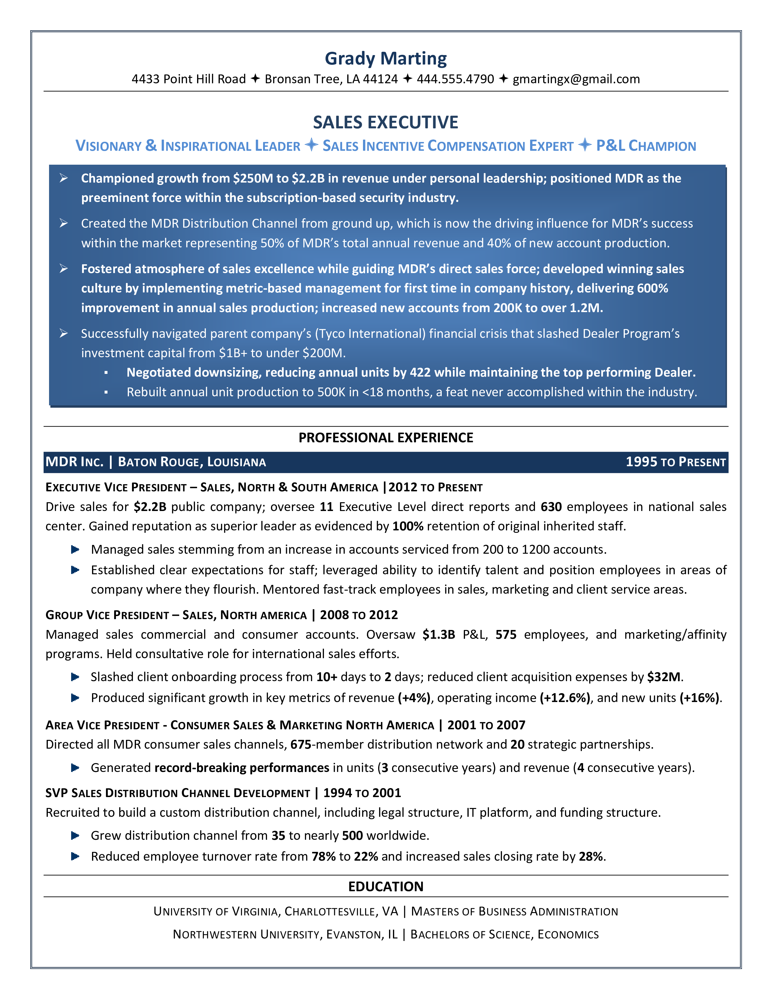 Free Sales Executive Job Resume | Templates at allbusinesstemplates.com
