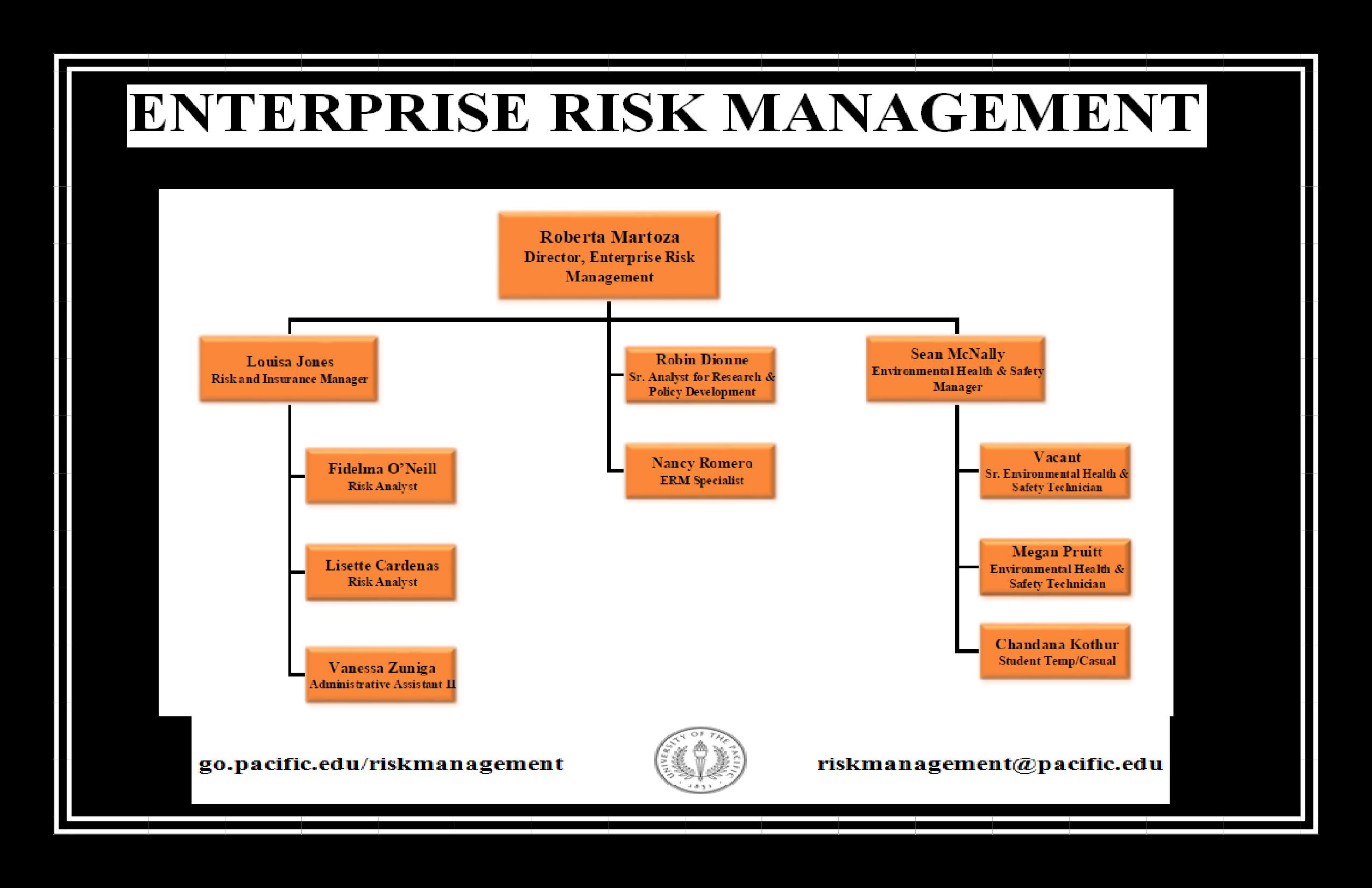 Free Enterprise Risk Management Organizational Chart Templates At