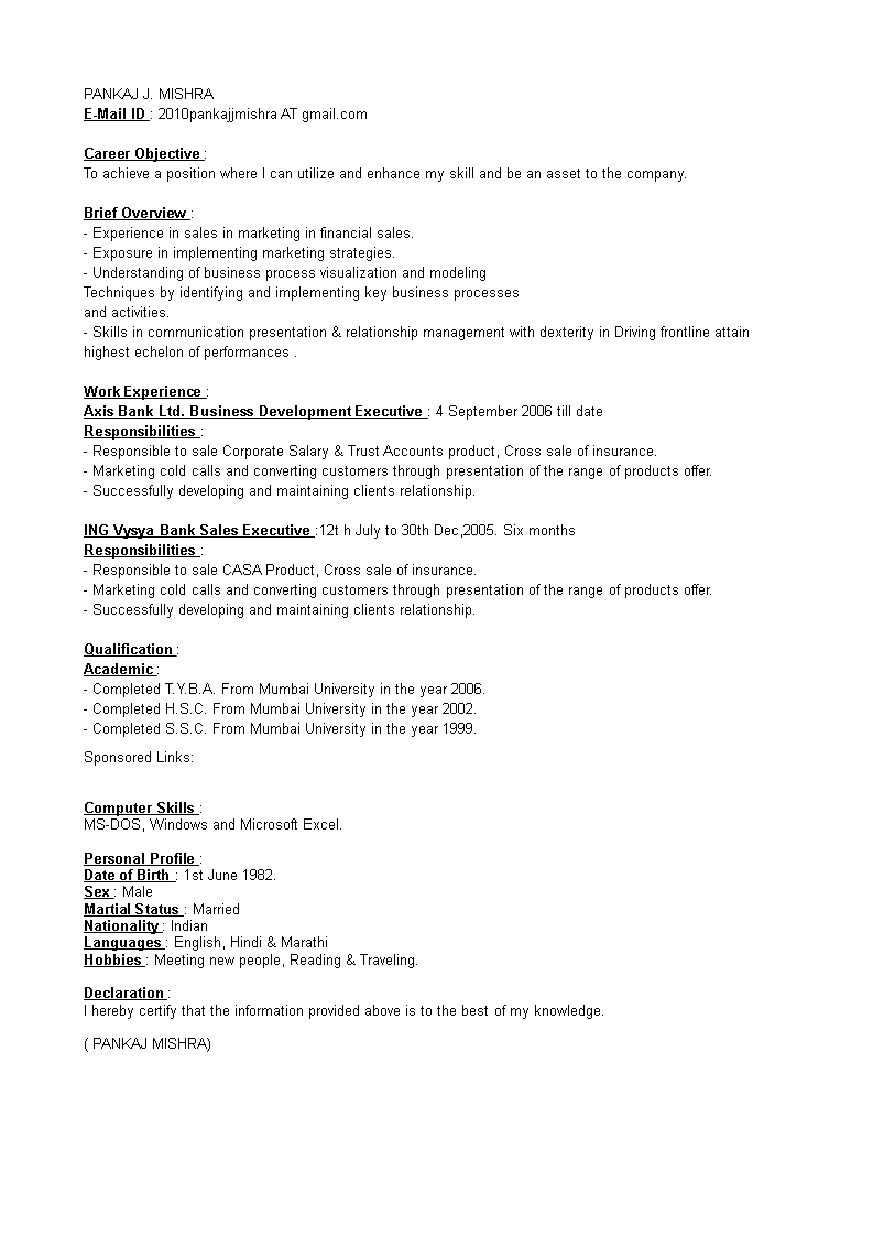 Business Development Executive Resume Main Image