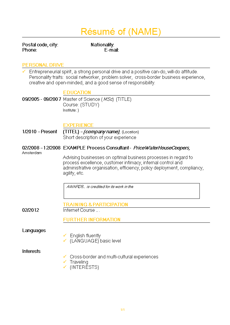 Consultant Resume template main image