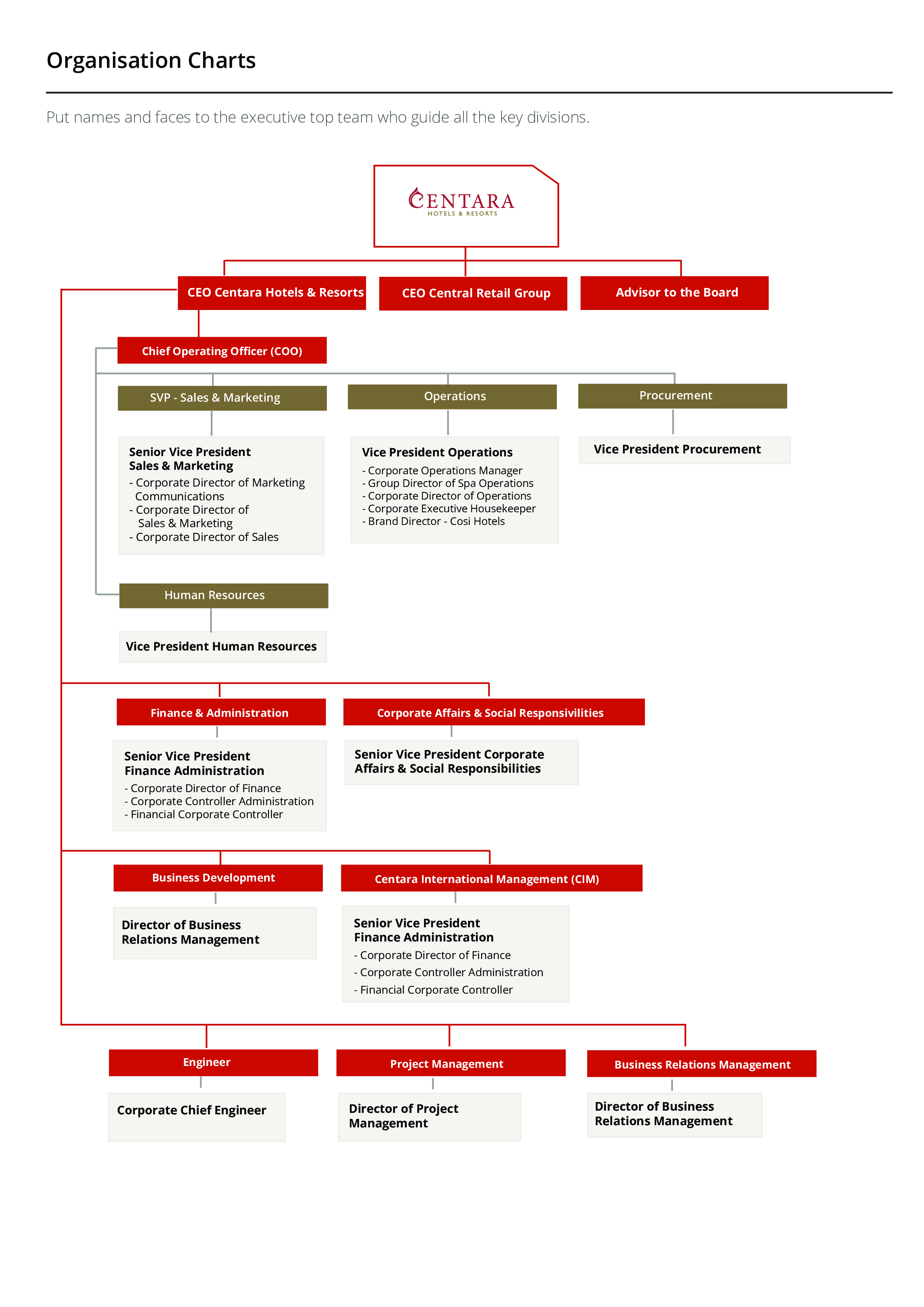 free business organization chart templates at