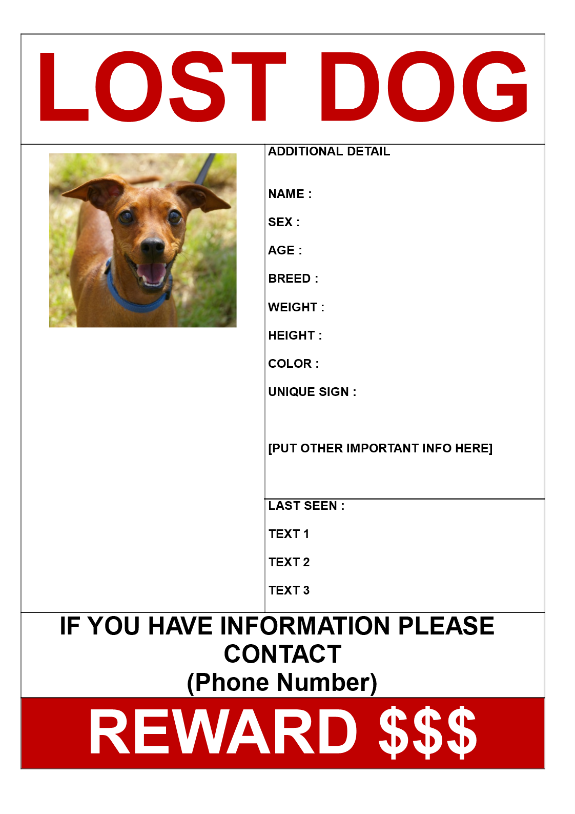 free find lost dog get reward poster a3 templates at