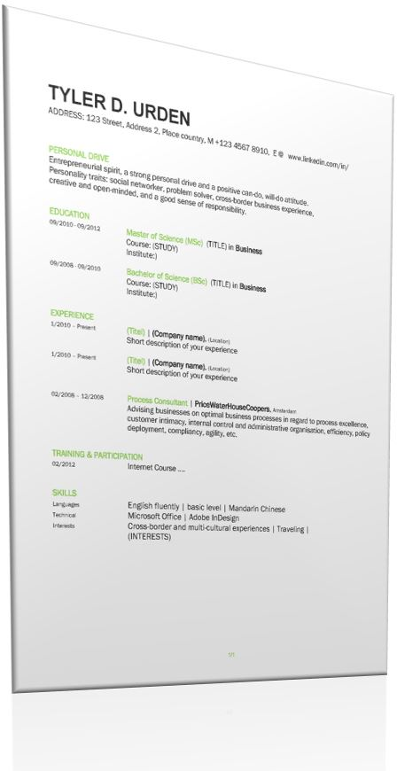 Professional Resume template main image