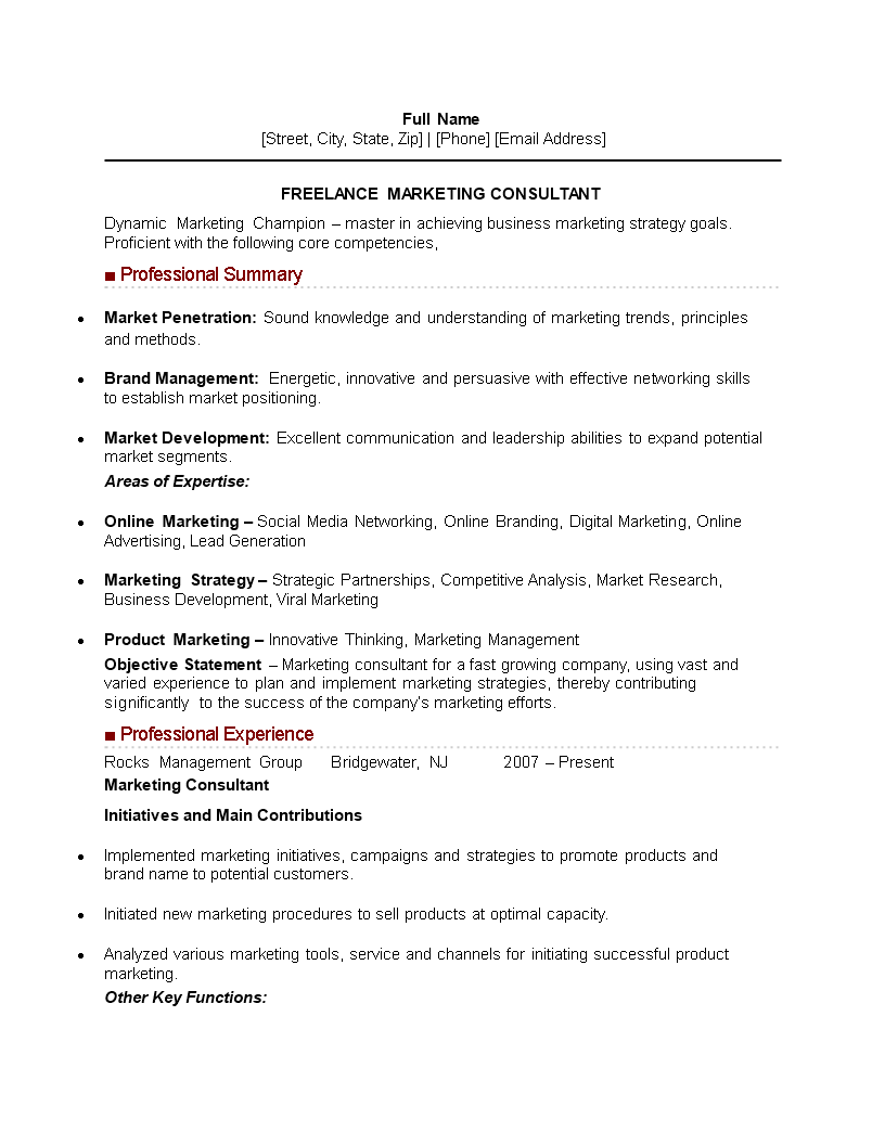 Freelance Marketing Consultant Curriculum Vitae Sample