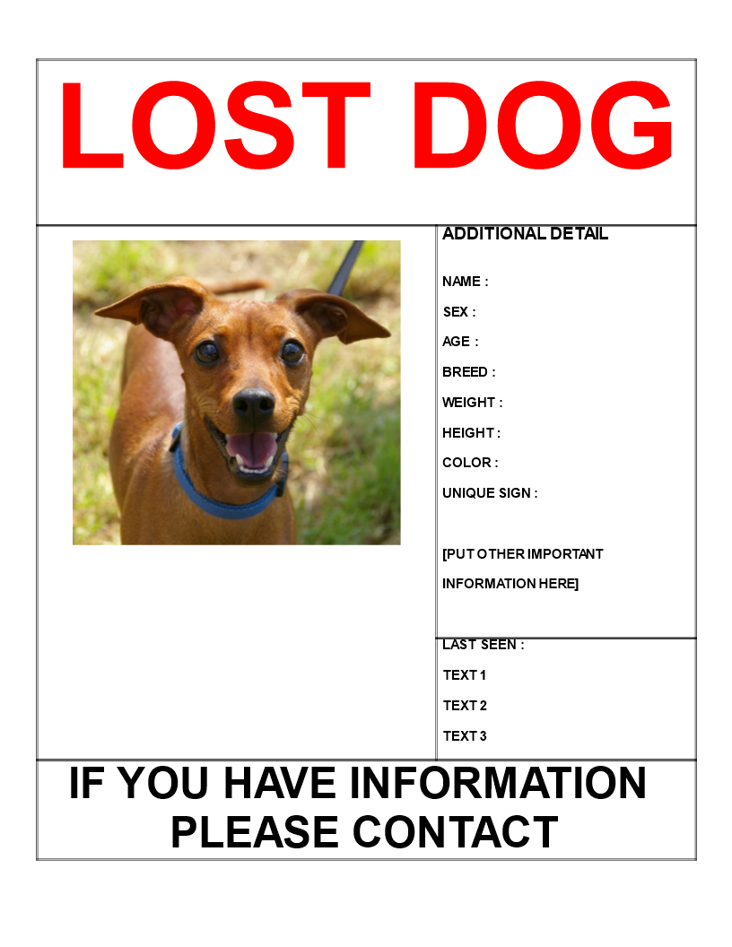 Find Missing Dog Poster Template Letter Size Main Image  Lost Dog Poster Template