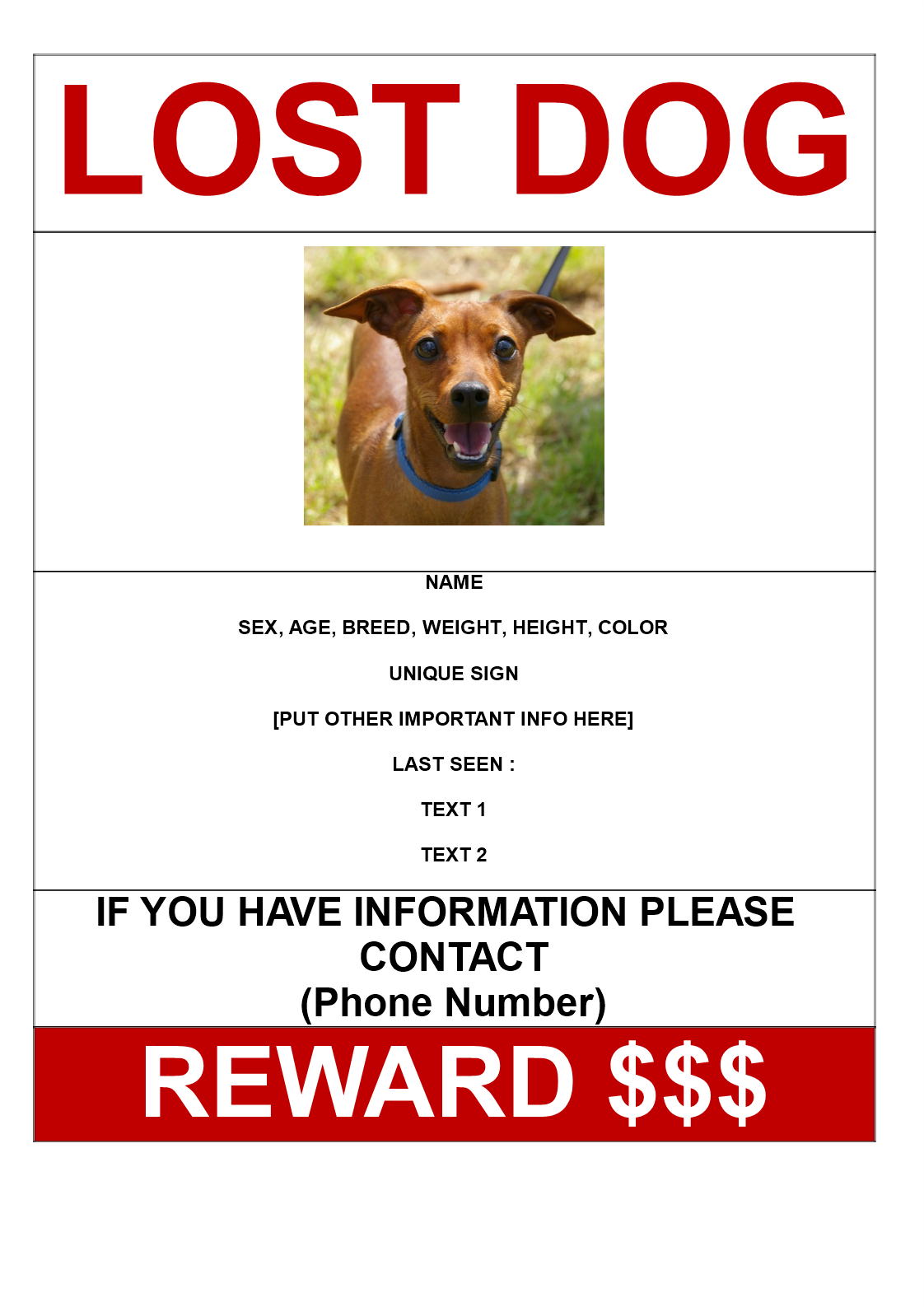 Missing Dog Poster With Reward A3 Size Main Image Download Template  Missing Reward Poster Template