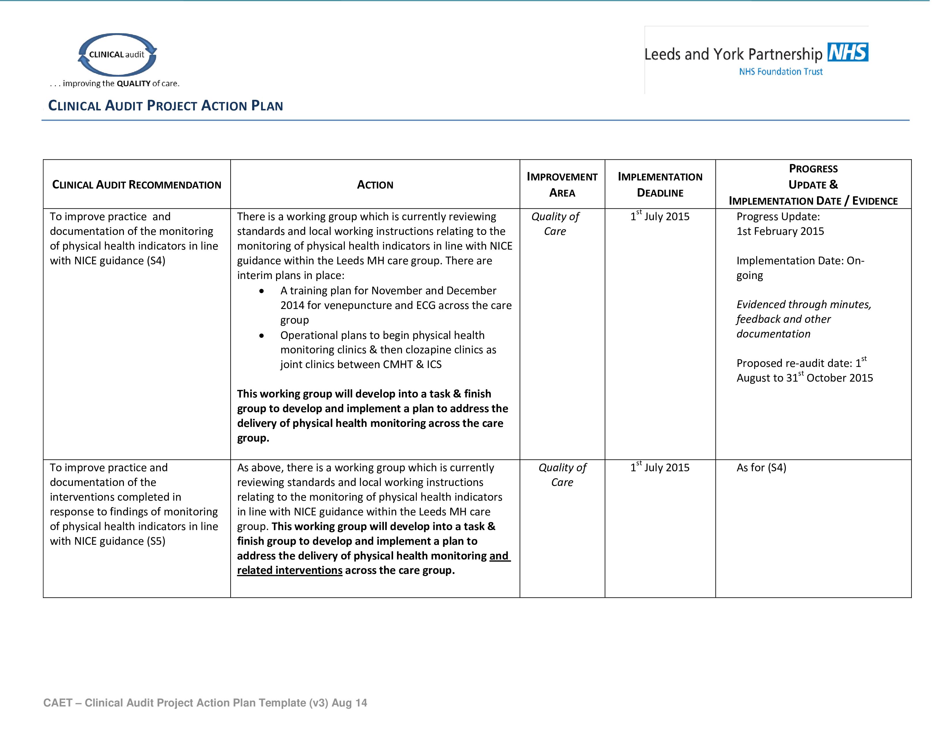 clinical audit action plan templates at. Black Bedroom Furniture Sets. Home Design Ideas