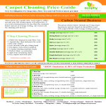 template topic preview image Carpet Cleaning Price Guide