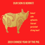 template topic preview image Chinese New Year Son is Born Year Pig