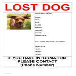 template topic preview image Missing Dog Poster in A3 Size