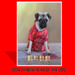 template topic preview image Chinese New Year Dog Presentation