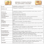 template topic preview image Herb Companion Planting Chart