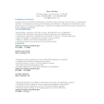 template topic preview image Software Engineering Manager Resume