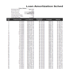 template topic preview image Loan Amortization Template sheet in excel