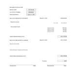 template topic preview image Bank Reconciliation worksheet excel template