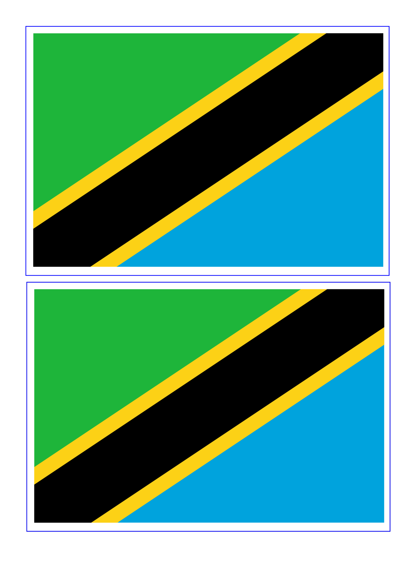 template topic preview image Tanzania Flag