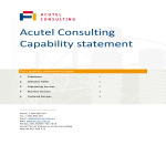 template topic preview image Consulting Capability Statement