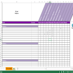 image RACI Excel template met instructies