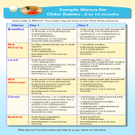 template topic preview image Baby Meal Plan