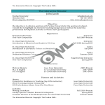 template topic preview image University Adjunct Interactive Resume