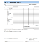 template topic preview image Volunteer Travel and Expense report template