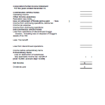 template topic preview image Corporation Partial Income Statement