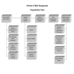 template topic preview image Risk Management Organizational Chart