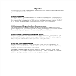 template topic preview image Executive Resume Word Format