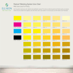template topic preview image Pantone Matching System Color Chart