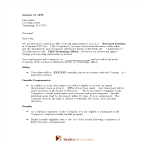 template topic preview image Employment Job Offer Letter