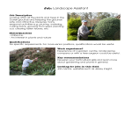 template topic preview image Landscaping Assistant Job Description
