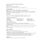 template topic preview image Entry Level Sales Associate Resume