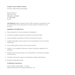 template topic preview image Finance Officer Resume
