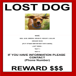 template topic preview image Missing Dog Template With Reward Model A3 Size
