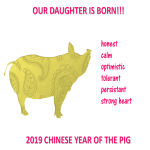 template topic preview image Chinese New Year Daughter is Born Year Pig