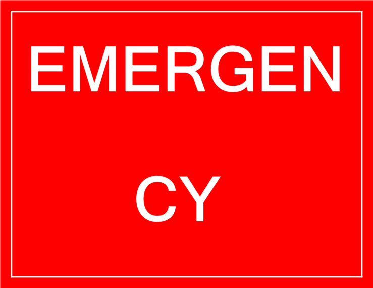 template topic preview image Professional Emergency Exit sign