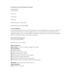 template topic preview image Executive Accountant Curriculum Vitae Sample