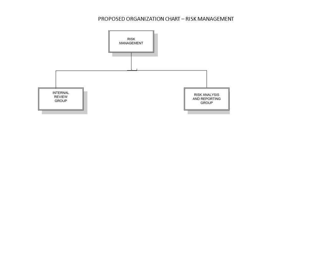 Free Risk Management Organization Chart | Templates at ...