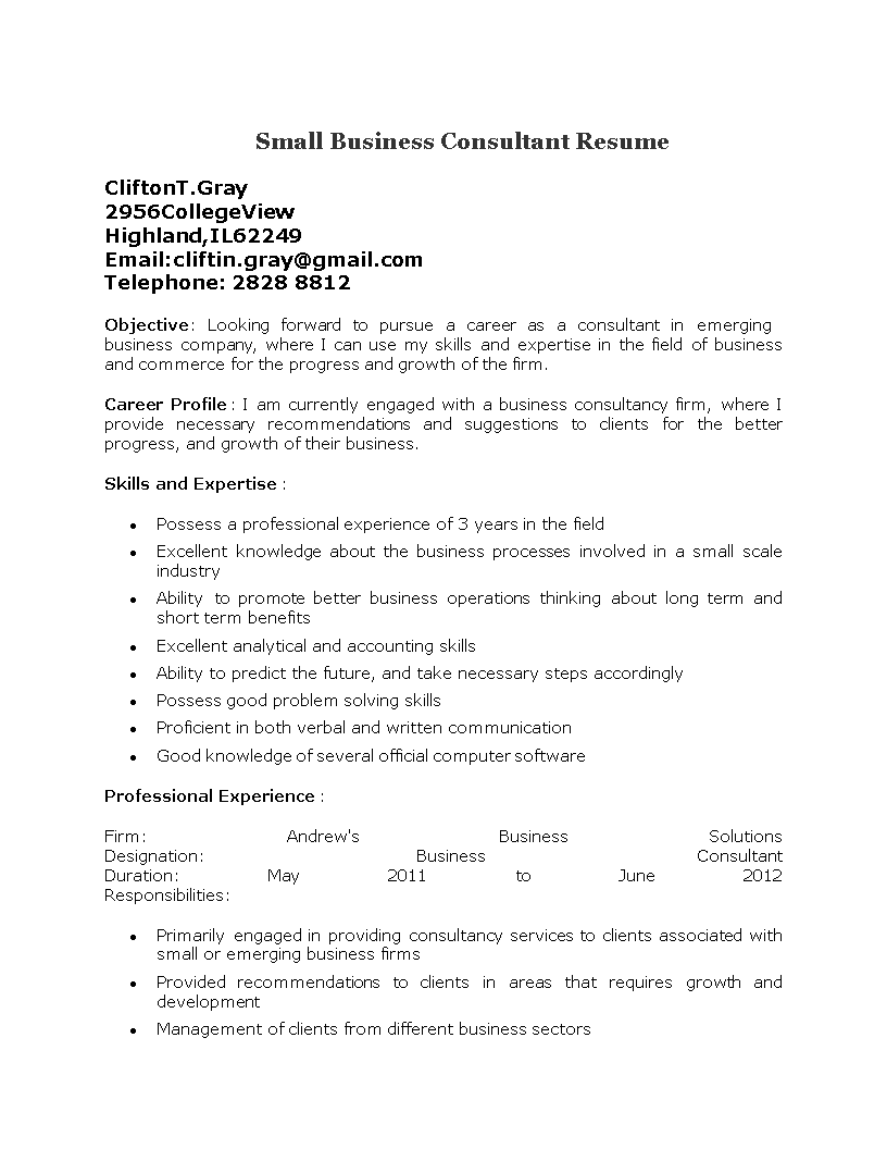 small business consultant resumes