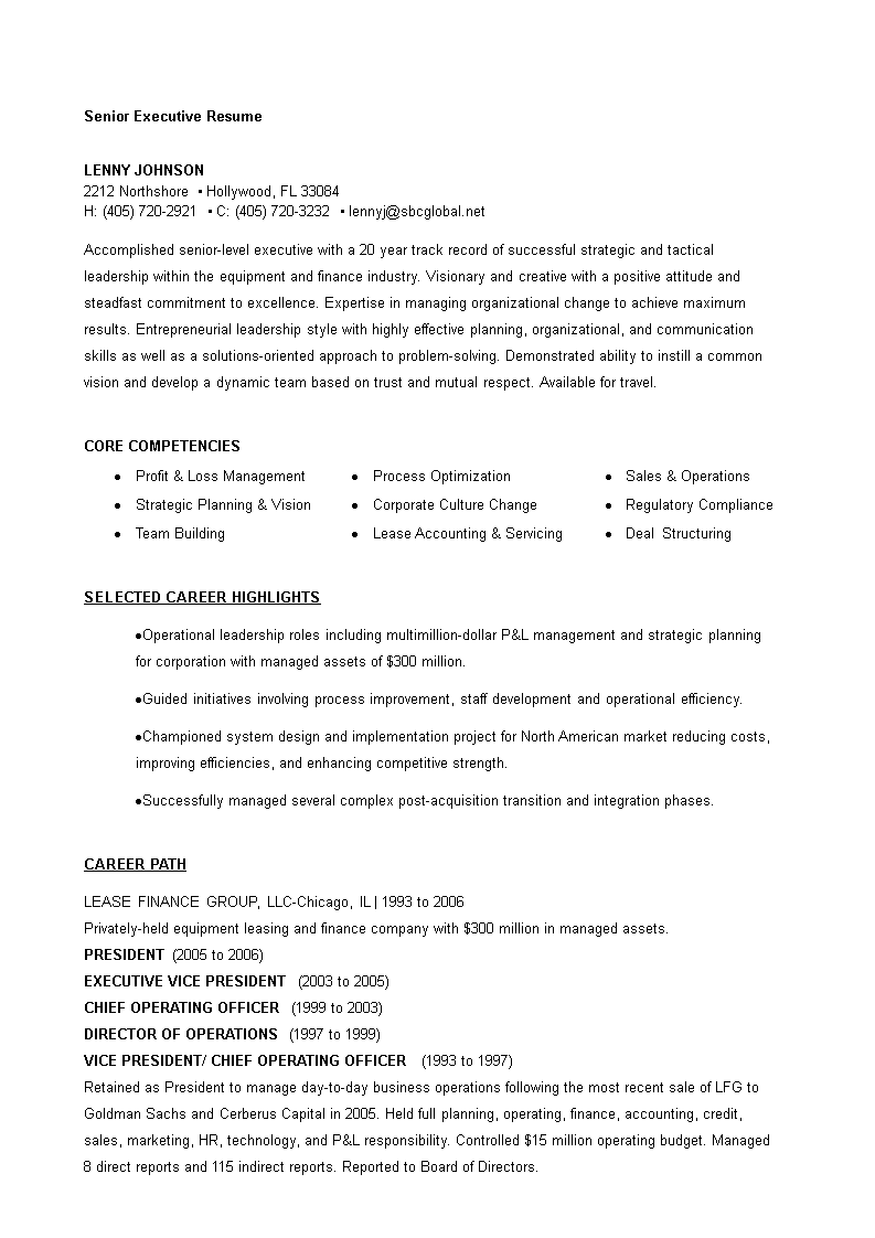 senior executive cv example