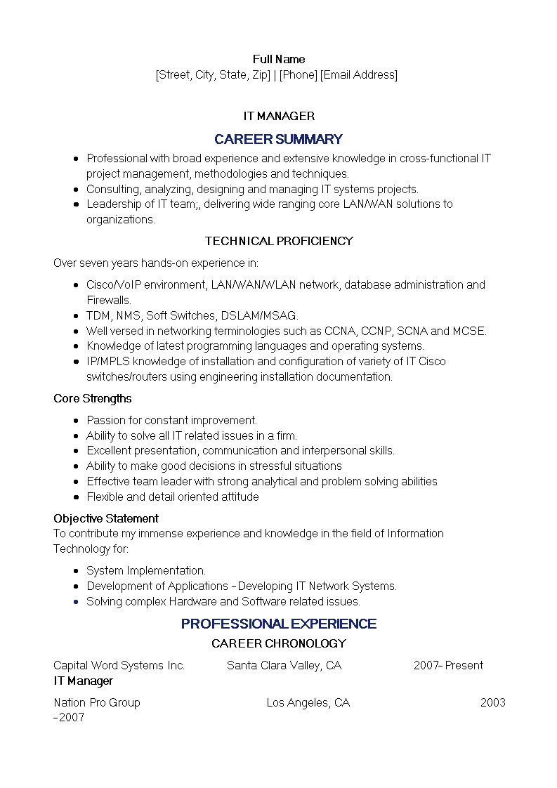 Technical It Resume Sample main image